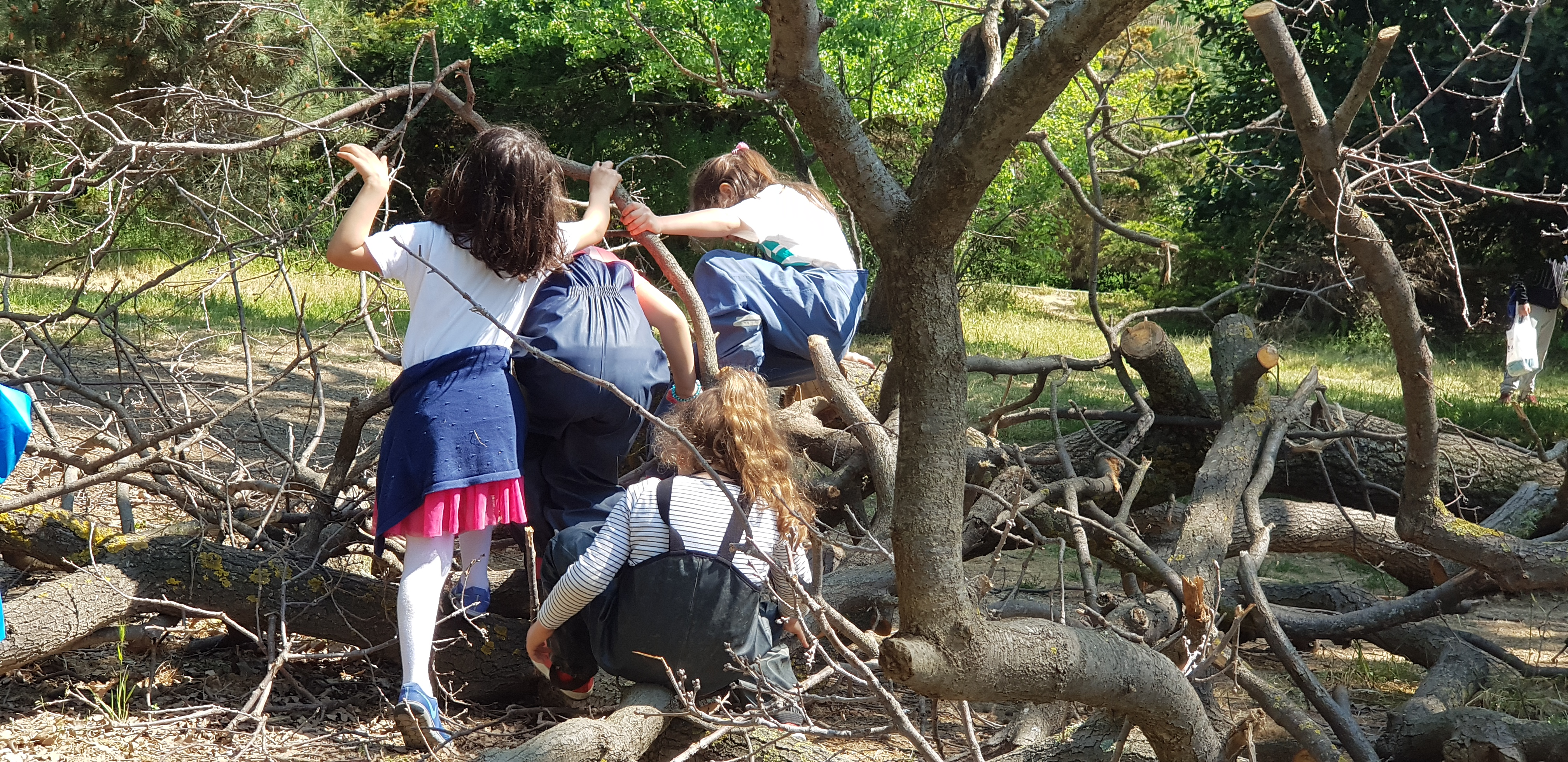 Oyuna dönüş, Doğaya dönüş, Doğala dönüş… - Küçük Orman Anaokulu